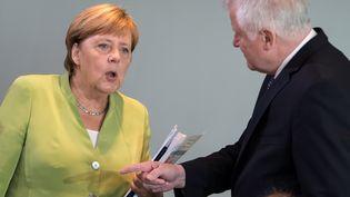 La chancelière allemande, Angela Merkel, et son ministre de l'Intérieur, Horst Seehofer, le 29 août 2018 à Berlin (Allemagne). (BERND VON JUTRCZENKA / DPA / AFP)