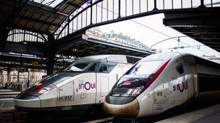 Des TGV à quai, le 5 décembre 2019 à Paris. (BENJAMIN MENGELLE / HANS LUCAS / AFP)