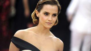 Emma Watson (DENNIS VAN TINE / GEISLER-FOTOPRES)