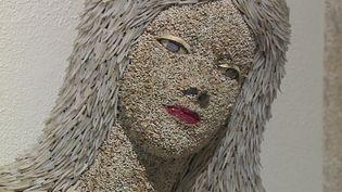 L'une des créatures toutes en coquillages imaginées par Sam Le Rol. (France 3 Champagne-Ardenne / M. Meyer)