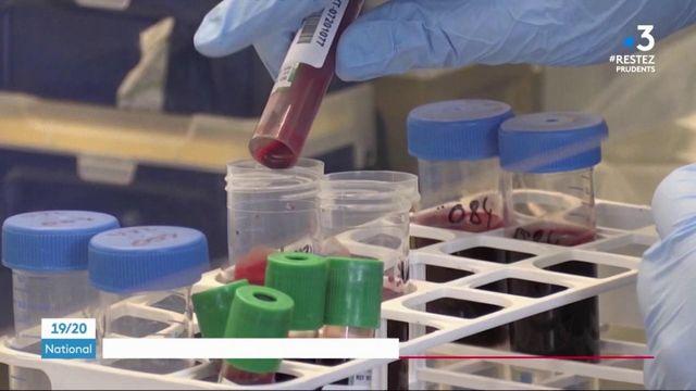 Coronavirus : un fois découvert, le vaccin pourra-t-il devenir un bien commun ?
