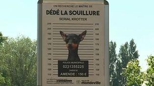 Affichages contre les incivilités, déjections canines, Calvados. (FRANCE 3)