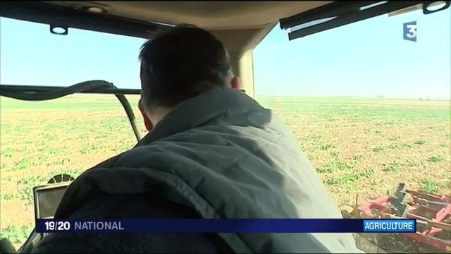 Agriculture : un plan d'aide de l'État