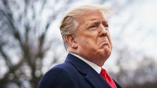 Le président américain Donald Trump à la Maison Blanche à Washington (Etats-Unis), le 22 mars 2019. (MANDEL NGAN / AFP)