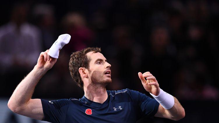 Andy Murray devient numéro 1 mondial. (FRANCK FIFE / AFP)