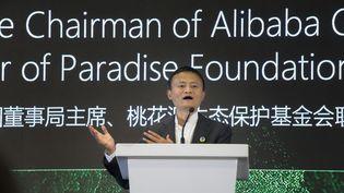 Le milliardaire Jack Ma, patron de l'entreprise de vente à distance Alibaba, le 7 août 2018 à Cape Town, en Afrique du Sud. (RODGER BOSCH / AFP)