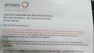 Le faux communiqué de l'Anses annonçait également que des animaux aux alentours pouvaient transmettre le virus. (FRANCE 3 PACA)