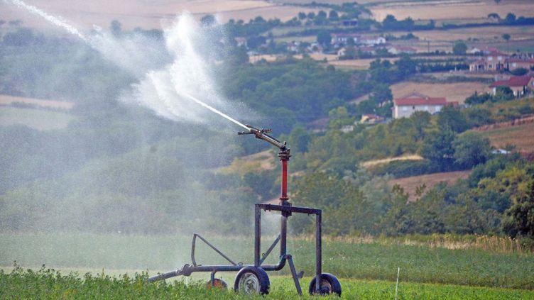 (Les agriculteurs devront réduire leurs irrigations dans 30 départements touchés par la sécheresse  © MaxPPP)
