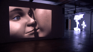 """""""Deep kiss"""" oeuvre vidéo de Catherine Ikam et de Louis Fléri à voir à la Friche la Belle de mai de Marseille  (MP2013)"""