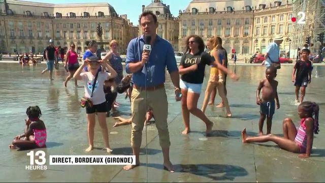 Canicule : pic de chaleur à Bordeaux