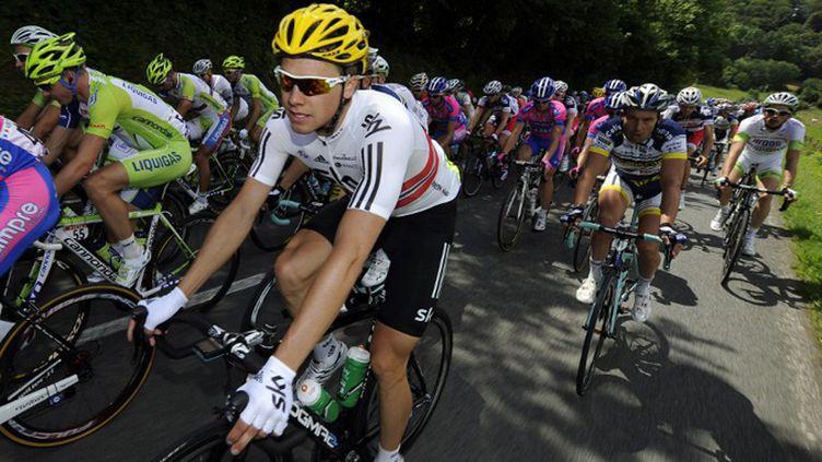 Le peloton du Tour 2012 (LIONEL BONAVENTURE / AFP)