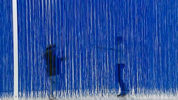 Rétrospective Rafael Jesus Soto au Musée Soulages de Rodez  (France 3 / Culturebox)