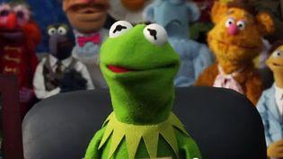 """Kermit dans """"Muppets"""", le film du britanique James Bobin qui doit sortir au printemps 2012 en France  (Bande annonde/Studios Disney)"""