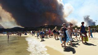 Des vacanciers quittent la plage alors que l'incendie progresse à Bormes-les-Mimosas (Var), le 26 juillet 2017. (ANNE-CHRISTINE POUJOULAT / AFP)