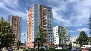 Un quartier prioritaire de la politique de la ville de Tremblay-en-France (Seine-Saint-Denis), en juillet 2018. (CLAIRE CHAUDIÈRE / RADIOFRANCE)