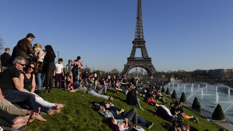 Les pelouses du Trocadéro, à Paris, le 9 mars 2014. (ALAIN JOCARD / AFP)