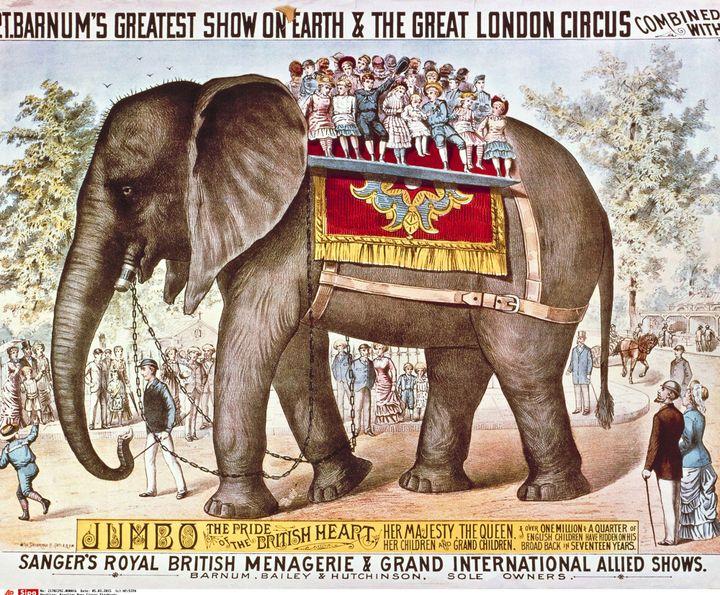L'éléphant, l'un des symboles du Cirque Barnum.  (AP/SIPA)