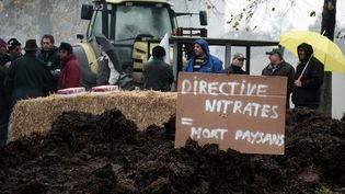 Des agriculteurs manifestent au Mans (Pays de la Loire), le 5 novembre 2014. (FREDERICK FLORIN / AFP)