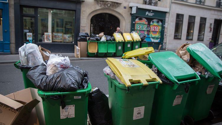 La Fédération professionnelle des entreprises de recyclage veut en finir avec les poubelles de différentes couleurs. (NICOLAS KOVARIK / MAXPPP)