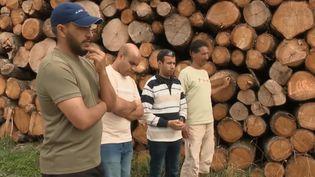 En France, quatre bûcherons originaires du Maroc ont travaillé un an pour un salaire inférieur à 2 000 euros. L'affaire a été portée devant la justice. (FRANCE 3)