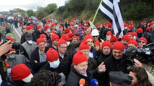 Les manifestants conte l'éxotaxe, le 26 octobre 2013 à Pont-de-Buis-lès-Quimerch (Finistère). (FRED TANNEAU / AFP)