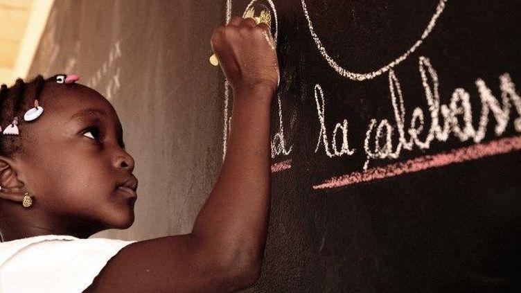 Une fille dans une école privée catholique de Niamey au Niger, en octobre 2013. (Ana Leboucher / AFP)