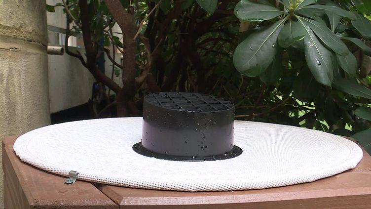 Le CHU de Nice teste un nouveau dispositif anti-moustiques. (CAPTURE D'ÉCRAN FRANCE 3)