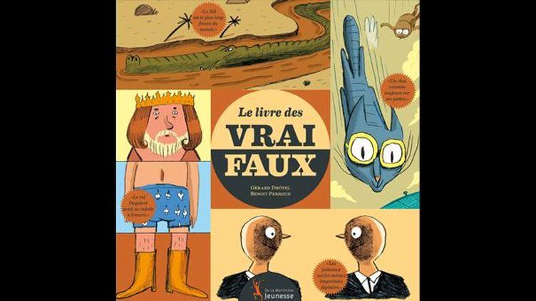 """""""Le livre des vrais faux"""" de Gérard Dhôtel  (Benoît Perroud / Editions De la Martinière Jeunesse)"""