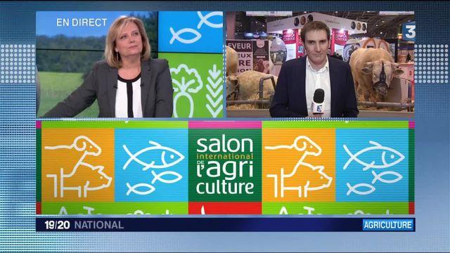 Salon de l'agriculture : François Hollande attendu de pied ferme