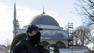 Après l'attentat, la police surveille les lieux touristiques à Istanbul le 12 janvier 2016. (HOLLY PICKETT / DPA)