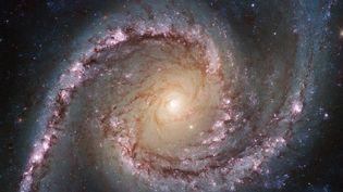 Lagalaxie NGC 1566, située à 40 millions d'années-lumière de la Terre, photographiée par le télescope spatial Hubble. Le cliché a étédiffusé par la Nasa le 10 juin 2014. (NASA / ESA / HUBBLE / AFP)