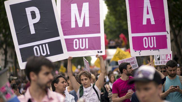 Des manifestants en faveur de la procréation médicalement assistée (PMA), lors de la Marche des fiertés à Paris, le 29 juin 2013. (LIONEL BONAVENTURE / AFP)