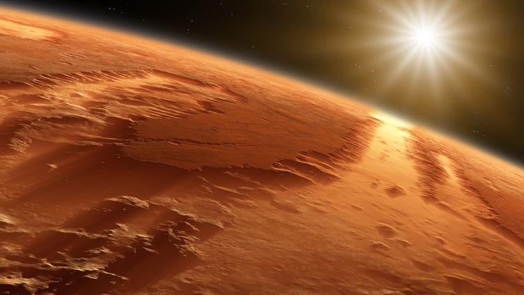 Les experts de la Nasa estiment que des hommes pourront être envoyés sur la planète Mars d'ici 20 ans. (DETLEV VAN RAVENSWAAY / PICTURE PRESS RM / GETTY IMAGES)