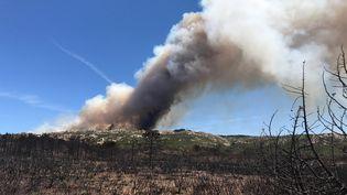 Des nuages de fumée du fait d'un incendie près de Bonifacio (Corse-du-Sud), le lundi 17 juillet 2017. (THOMAS FREY / DPA)