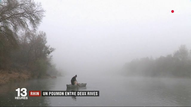 Feuilleton : la vie au fil du Rhin (2/4)