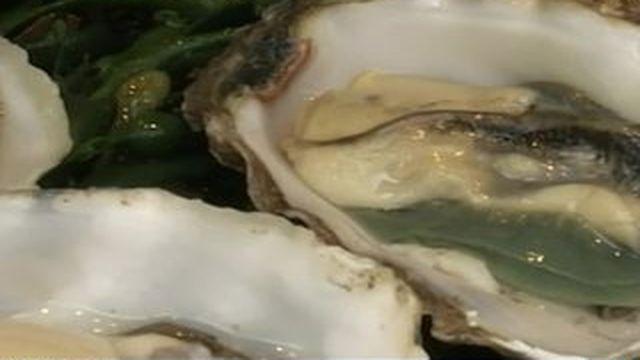 L'huître, bientôt un produit de luxe ?