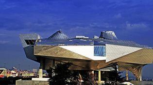 Le musée des Confluences de Lyon  (Richard Mouillaud / PQR Le Progrès)