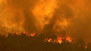 Un mégafeu à Brigadoon dans le Perth en Australie. (TREVOR COLLENS / AFP)