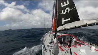 Science : les navigateurs du Vendée Globe récoltent des informations sur l'océan (France 2)