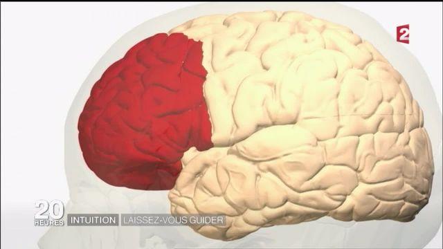 Santé : les nouvelles voies de l'intuition ?