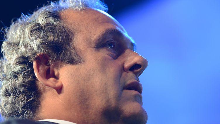 L'image de Michel Platini est de plus en plus écornée avant le vote pour la présidence de la FIFA (PATRICK SEEGER / DPA)
