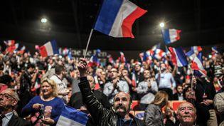 Un militant du Front national brandit un drapeau tricolore pendant le discours de Marine Le Pen au Congrès du FN à Lyon (Rhône), le 30 novembre 2014. (JEFF PACHOUD / AFP)