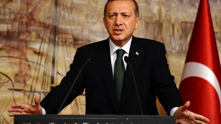 Le Premier ministre turc, Recep Tayyip Erdoğan, donne une conférence de presse à Istanbul (Turquie), le 17 décembre 2011. (MUSTAFA OZER /AFP PHOTO)