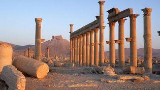 Le site archéologique de Palmyre, en Syrie  (Tibor Bognar / Photononstop)