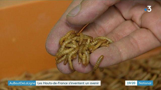 Au bout de la ligne : dans les Hauts-de-France, chaque département ses problématiques