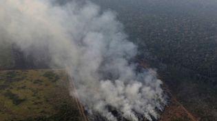 La forêt amazonienne en feu près de Porto Velho (Etat duRondônia), au Brésil, le 21 août 2019. (MARCELINO UESLEI / REUTERS)