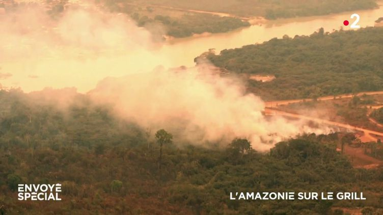 L'Amazonie sur le grill (ENVOYÉ SPÉCIAL  / FRANCE 2)