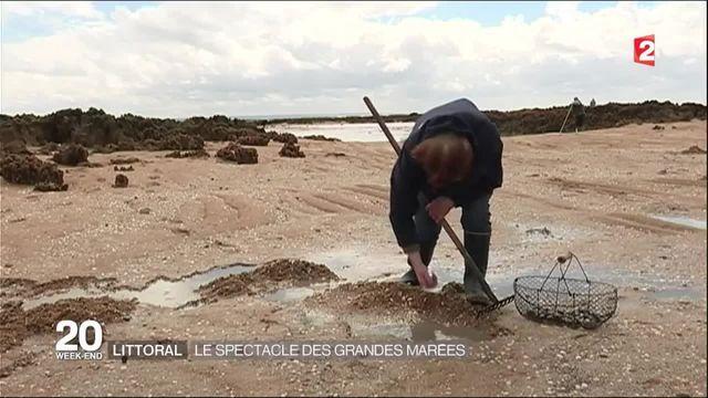 Les grandes marées magnifient le Mont-Saint-Michel