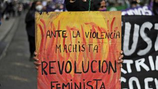 """""""Face à la violence machiste, la révolution féministe"""", est-il écrit sur la pancarte de cette manifestante, lors d'une marche organisée à l'occasion de la journée internationale pour l'élimination des violences faites aux femmes, à La Paz (Bolivie), le 25 novembre 2020. (JORGE BERNAL / AFP)"""