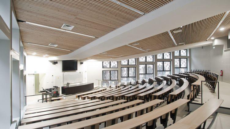 Un amphithéâtre vide de Sciences Po Lille (Nord), le 7 février 2017. (SEBASTIEN JARRY / MAXPPP)
